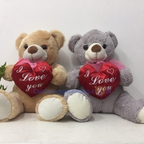 Gấu teddy ôm tim I Love You